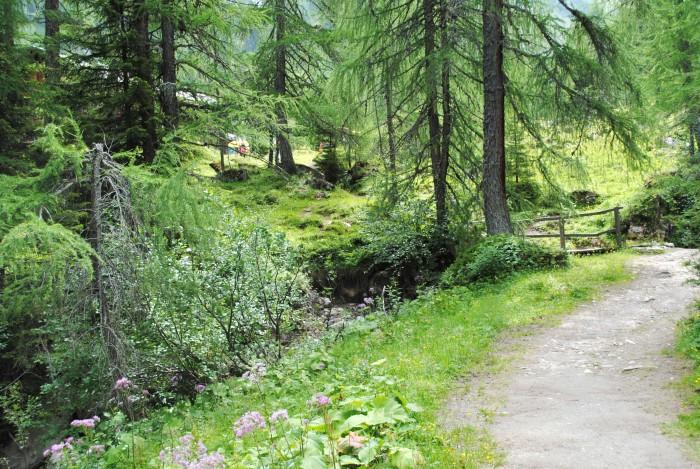 Märchen Waldwanderung mit Märchenerzählerin