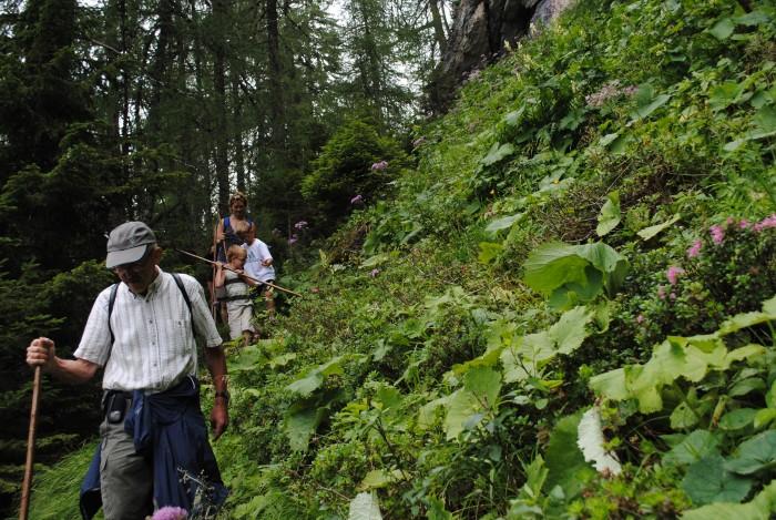 Begleitete Märchenalm-Wanderwochen für Familien